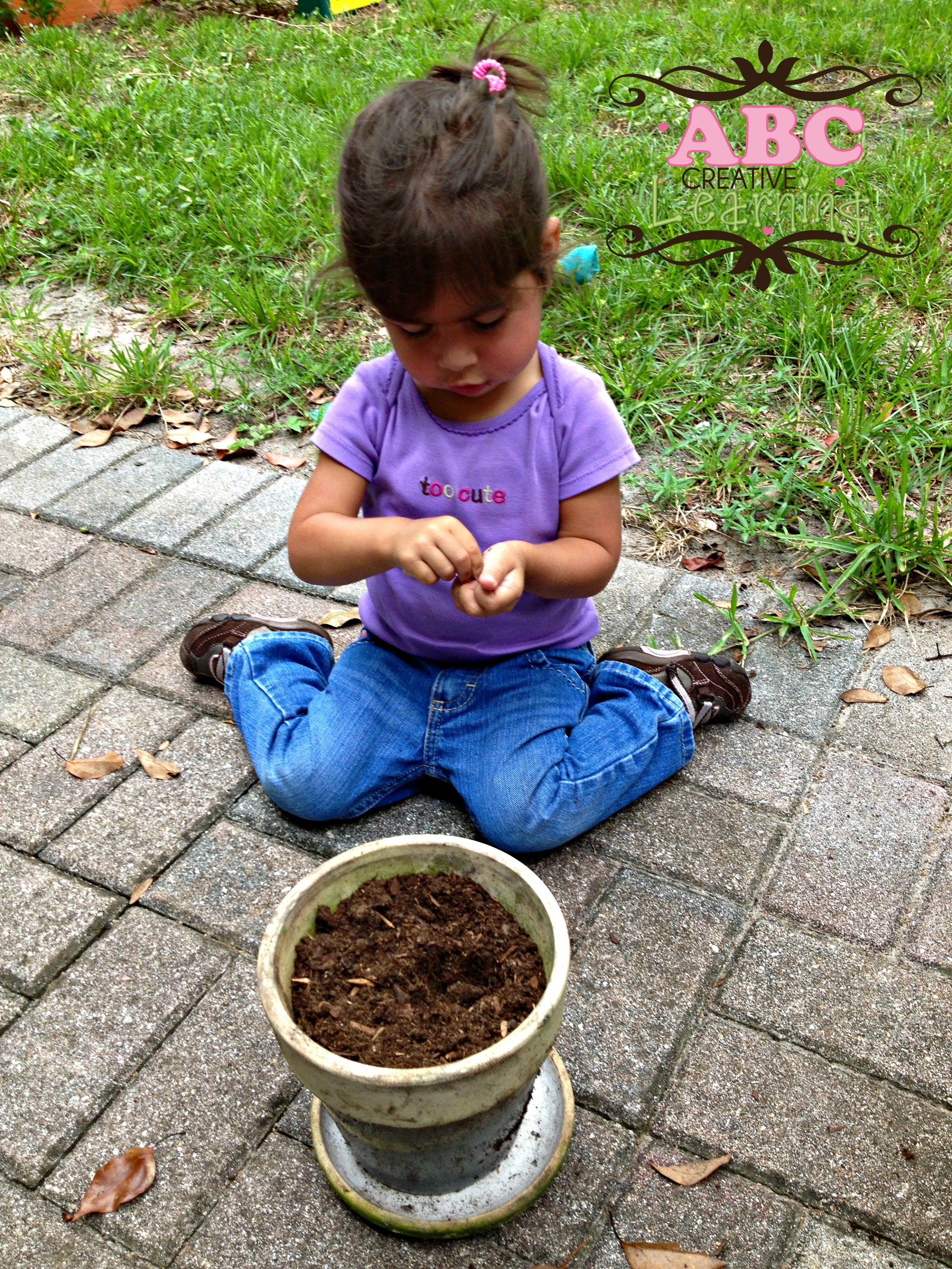 Science Planting Seeds