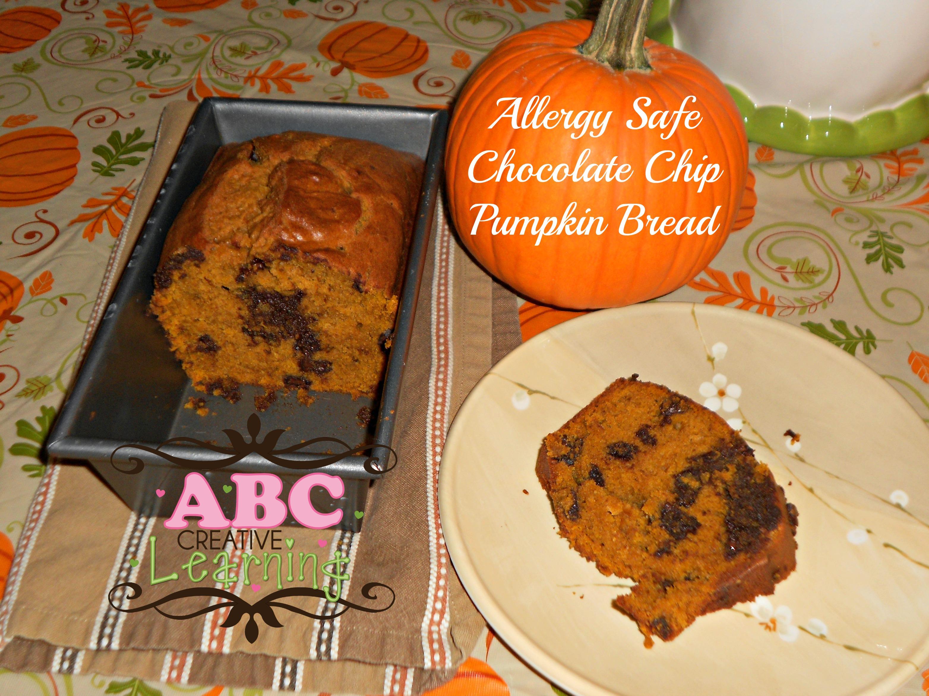 Allergy Safe Chocolate Chip Pumpkin Bread Recipe