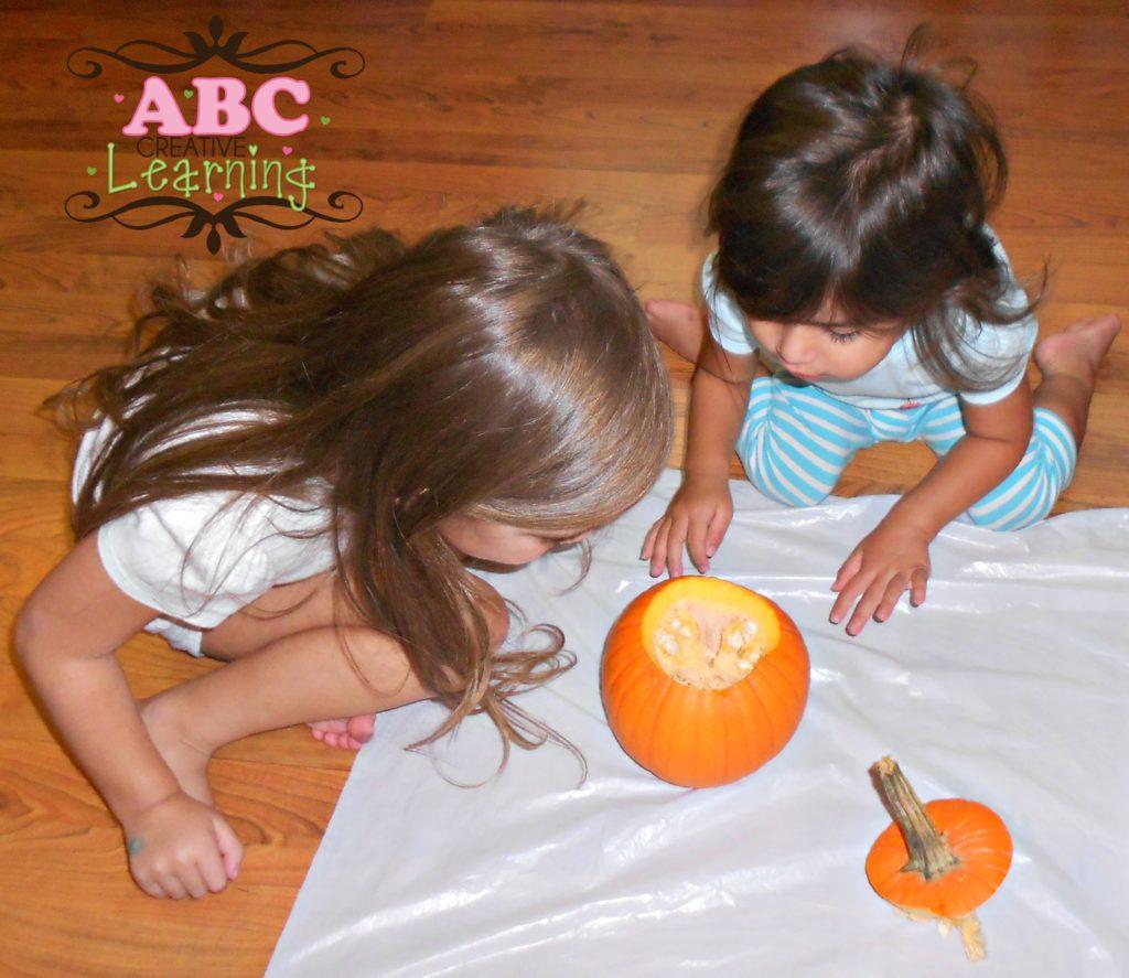 Inside a Pumpkin