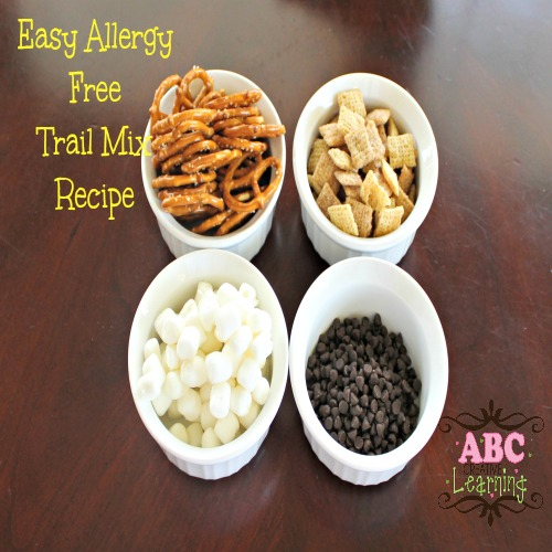 Easy Allergy Free Trail Mix Recipe