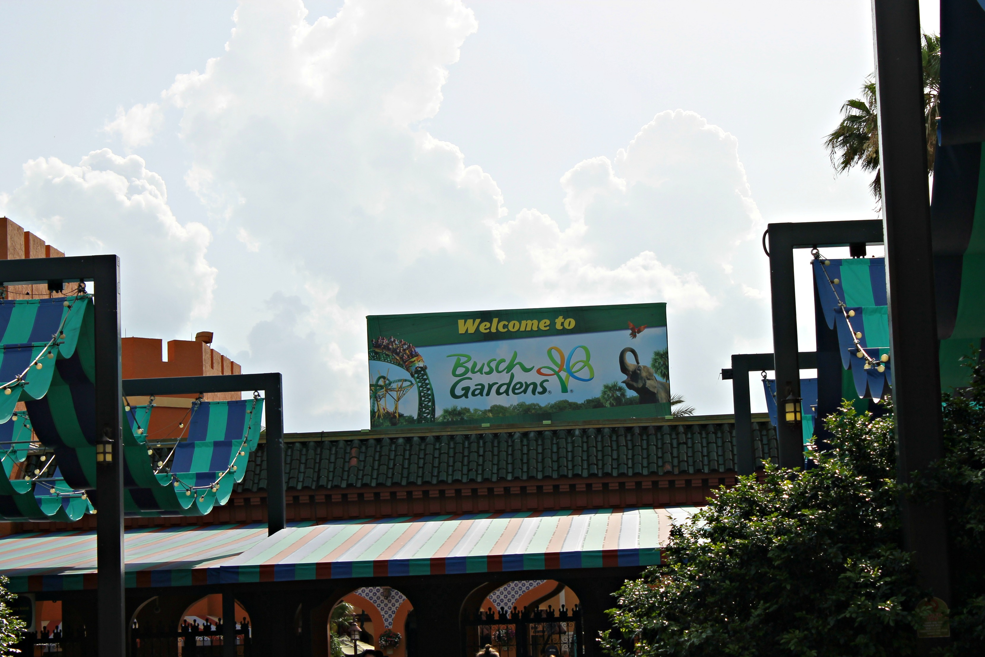 Busch Gardens Tampa Bay Making Family Memories