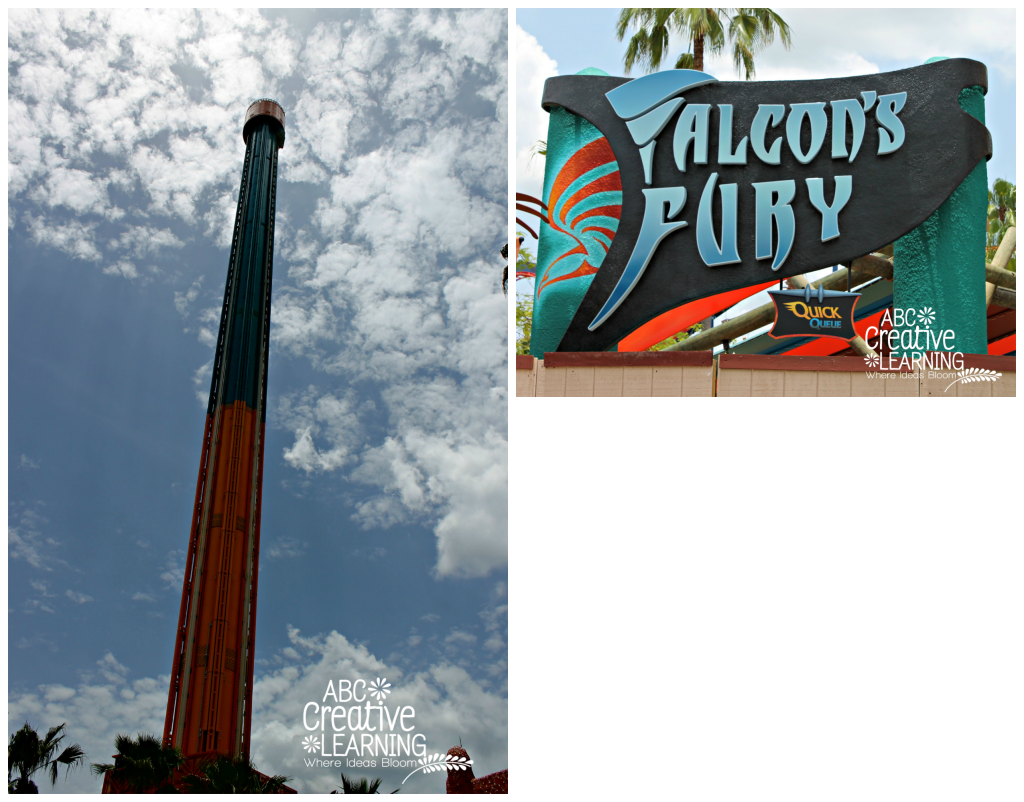 Busch Gardens Tampa Falcons Fury