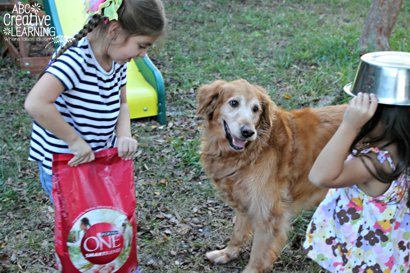Jasmine and Purina ONE Smartblend Dog Food 28 Day Challenge