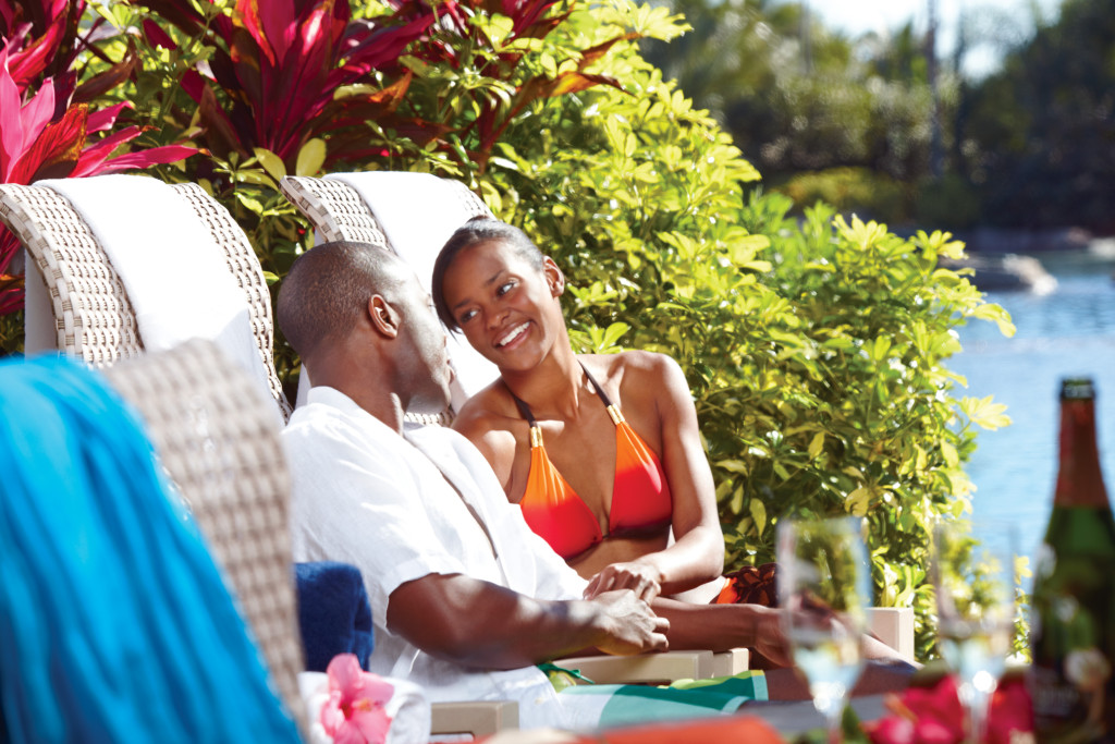 Valentine's Day Special at Discovery Cove for an Extraordinary Adventure