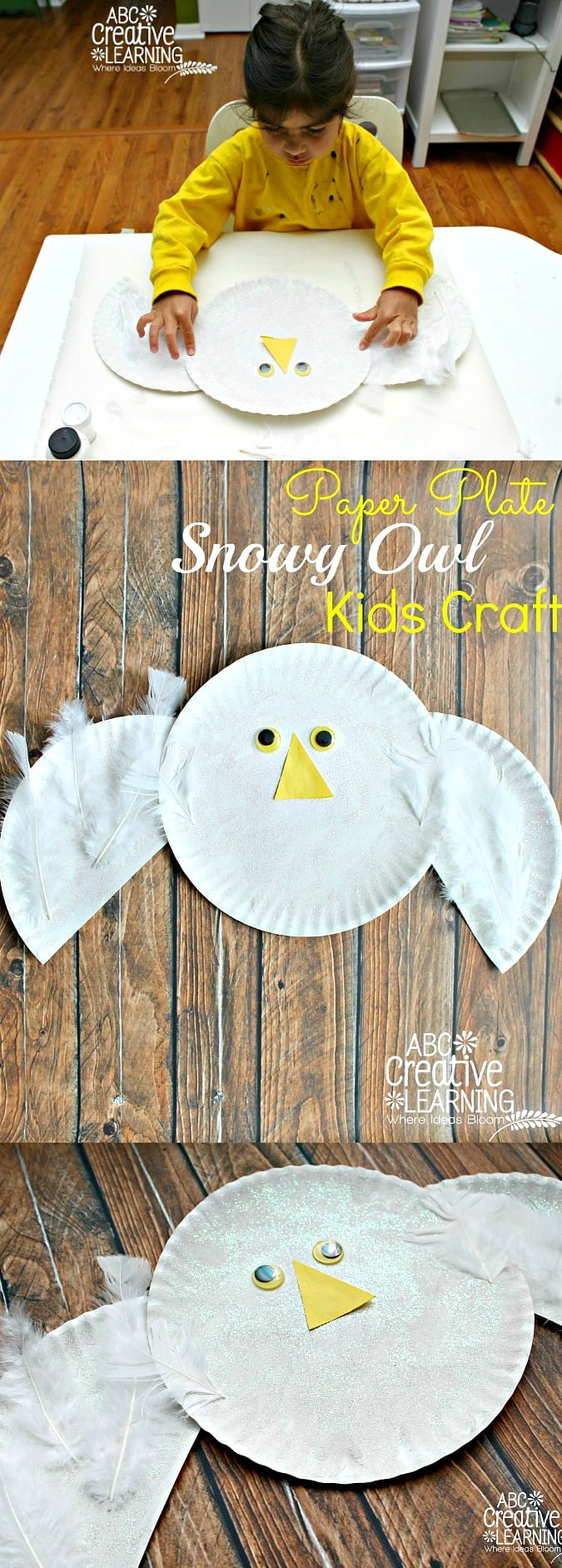 Paper Plate Snowy Owl Kids Craft - simplytodaylife.com