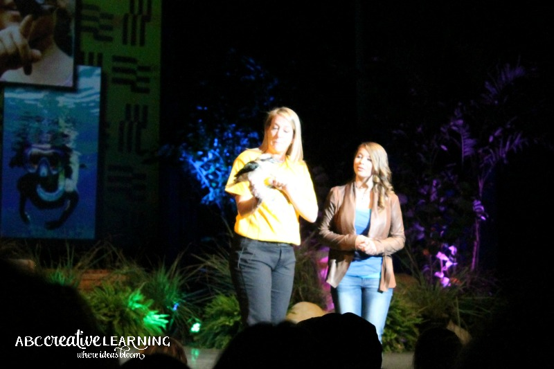 SeaWorld Wild Days with Bindi Irwin