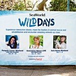 Wild Days Weekend at SeaWorld Orlando