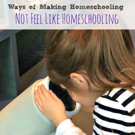 Ways Of Making Homeschooling Not Feel Like Homeschooling