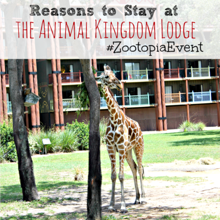 Reasons To Stay At Disney's Animal Kingdom Lodge #ZootopiaEvent