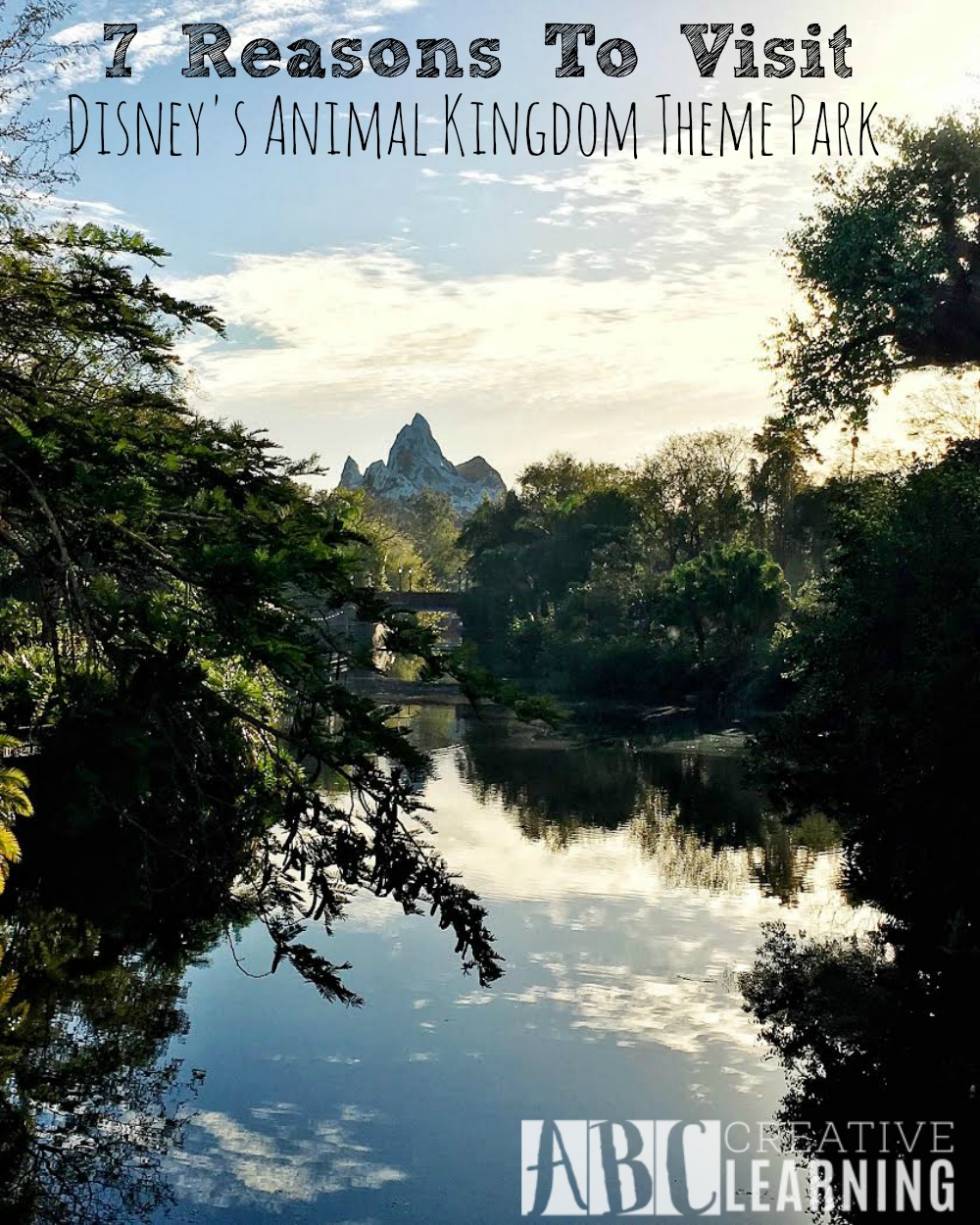 7 Reasons To Visit Disney's Animal Kingdom Theme Park 0
