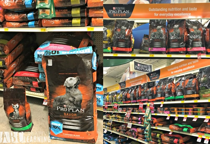 Tips For Making Summer the Best For Your Pets store