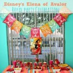 Disney's Elena of Avalor Royal Party Celebration