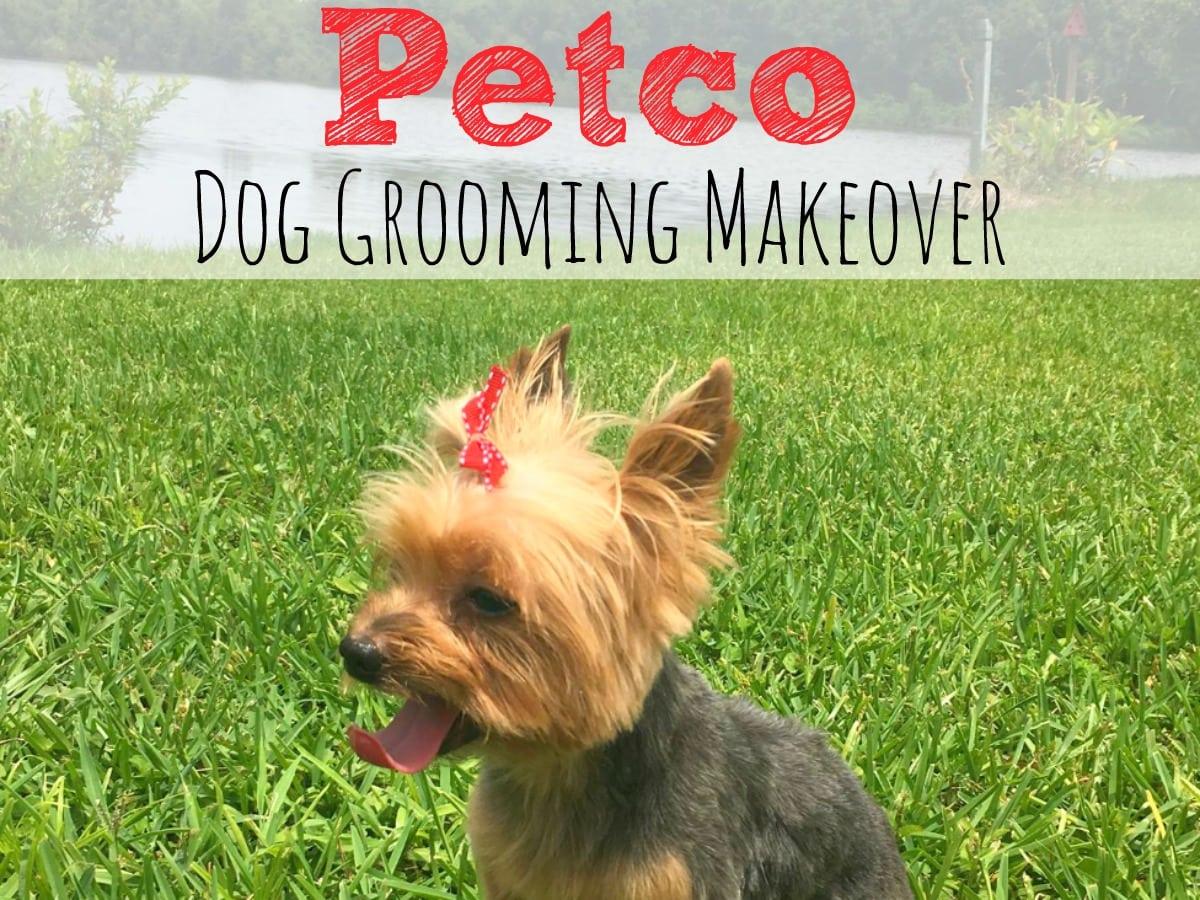 Petco Dog Grooming Reviews