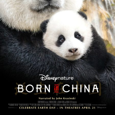 Disneynature Born In China Trailer and Activity Packet #BornInChina