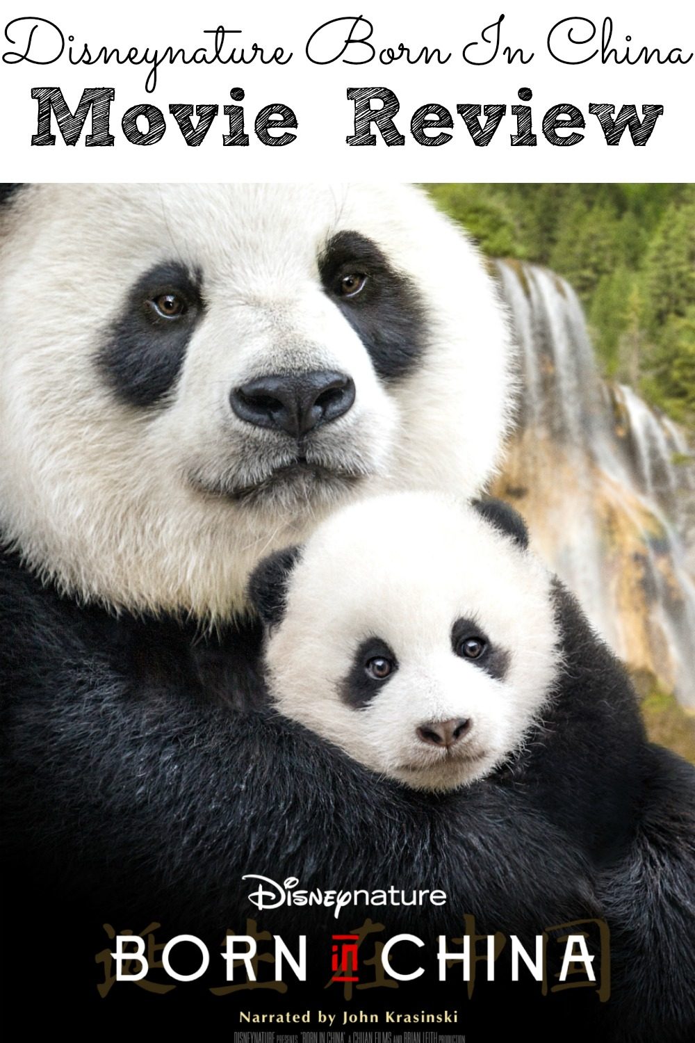 Disneynatures Born In China Movie Review