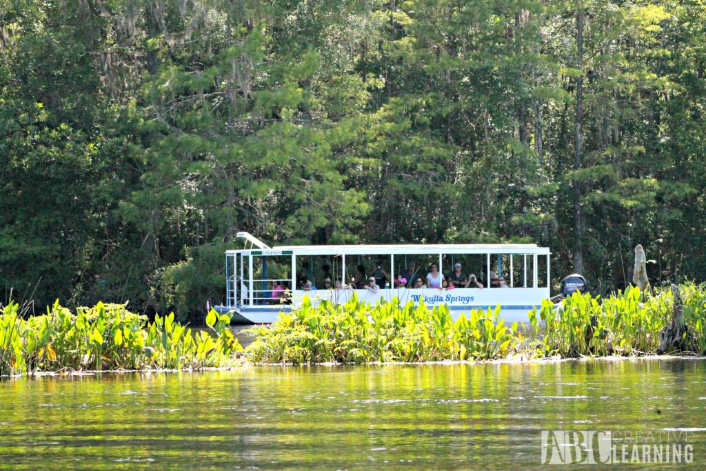 Free or Cheap Activities to do with Kids in Florida - Boat Tour