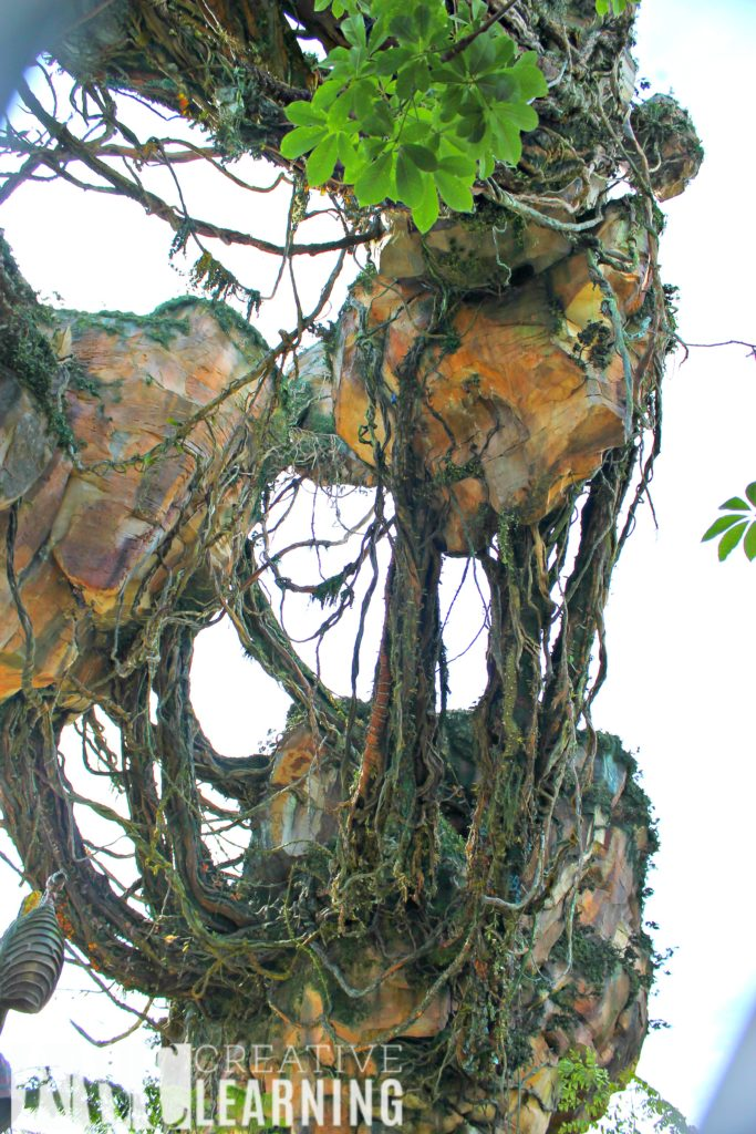 Pandora - World of Avatar at Disney's Animal Kingdom | 5 Things To Experience #VisitPandora Floating Mountains