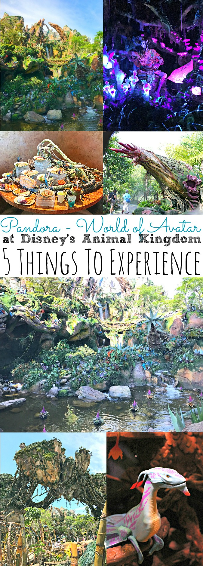 5 Things To Experience at Pandora World of Avatar