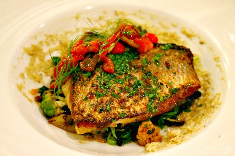 8 Reasons To Stay At Disney's Vero Beach Resort + Room Tour - Fresh Red Snapper Entree