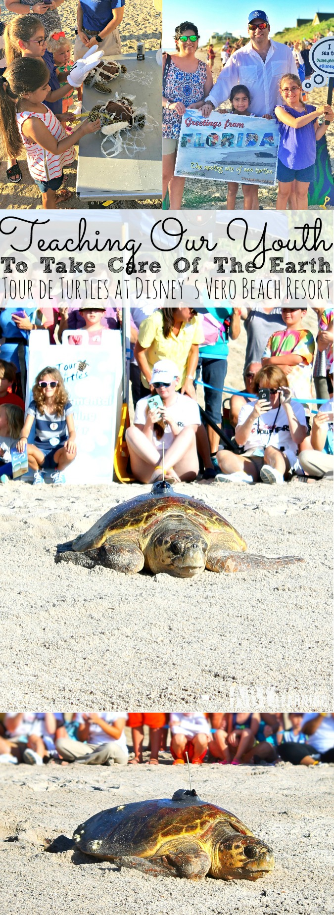 Teaching Our Youth To Take Care Of The Earth | Tour de Turtles at Disney's Vero Beach Resort - simplytodaylife.com