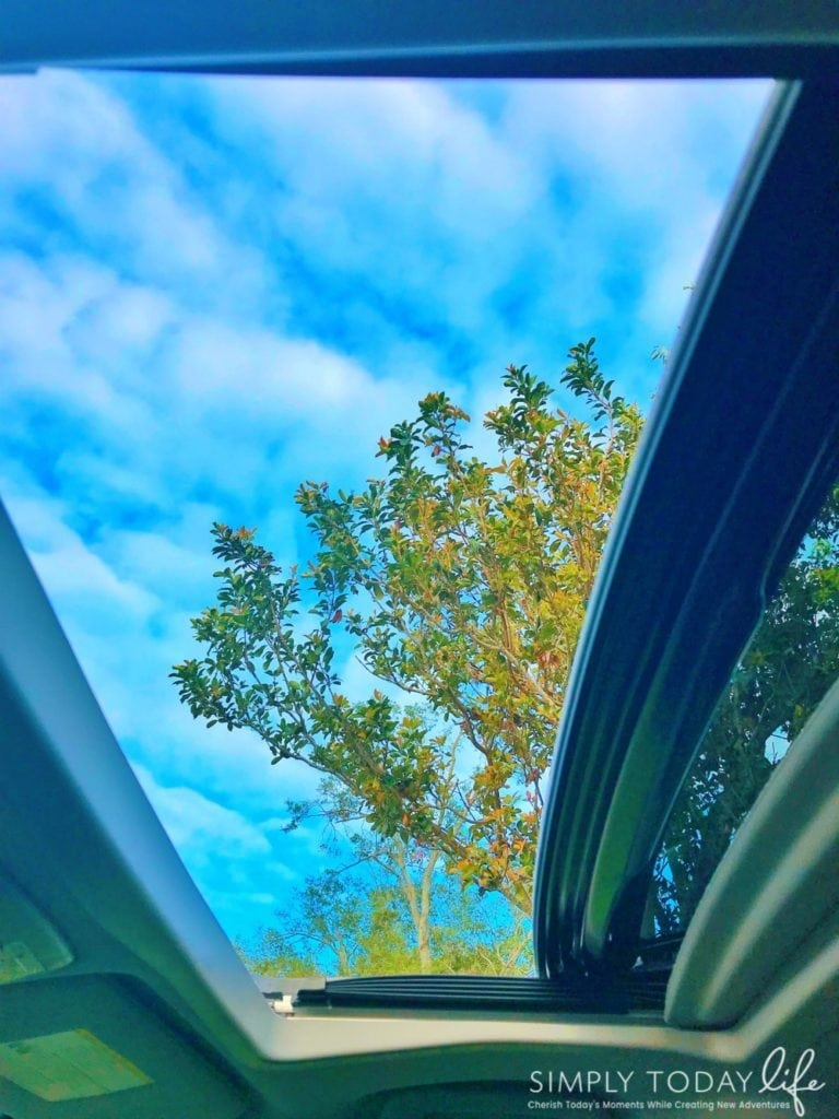 Reasons The Toyota Sienna SE Is The Perfect Family Car Sunroof