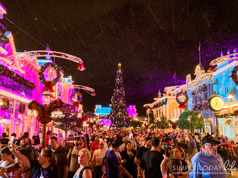 Main Street USA Disney at Christmas