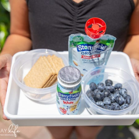 After-School Snack Box For Kids On The Go