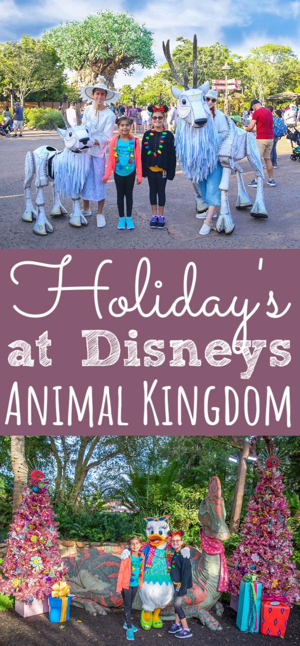 Holidays at Animal Kingdom