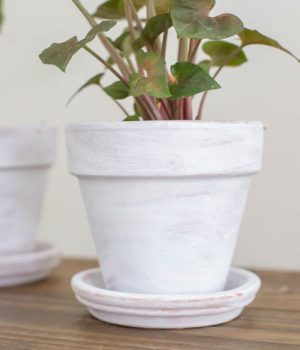 Painting Terra Cotta Posts With Whitewash
